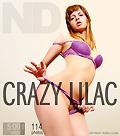 Crazy lilac